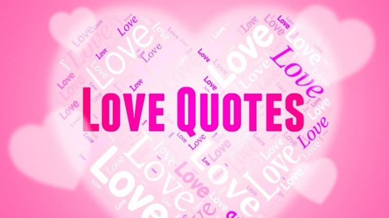 The Best 50 Love Quotes for Your Special Wife