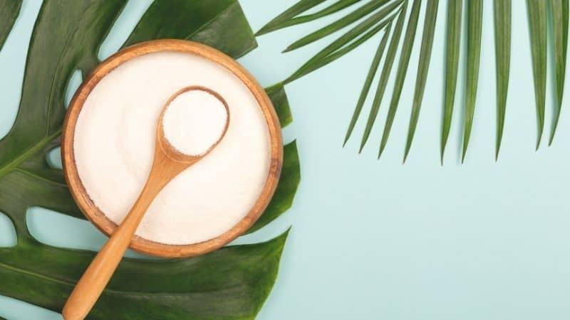 The 10 Best Collagen Powder for Skin in India