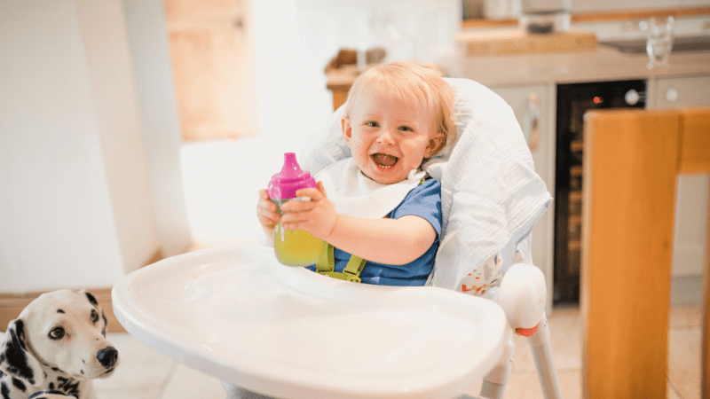 The Best High Chair for Babies India 2021