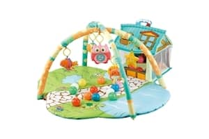 R for Rabbit First Play House Play Gym